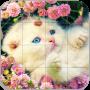 icon Tile Puzzle Cats